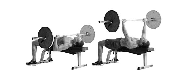 Barbell-bench-рress