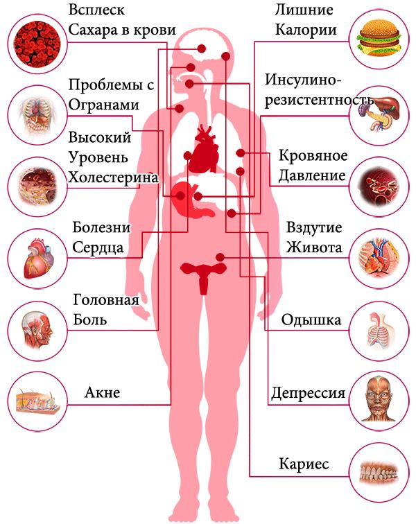 влияние фастфуда на организм