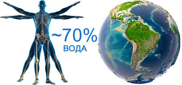 70%-воды-в-организме-человека-и-земли
