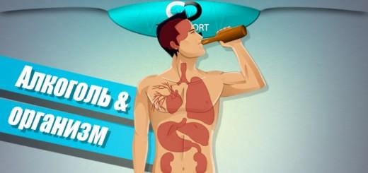 Воздействие-алкоголя-на-мышцы