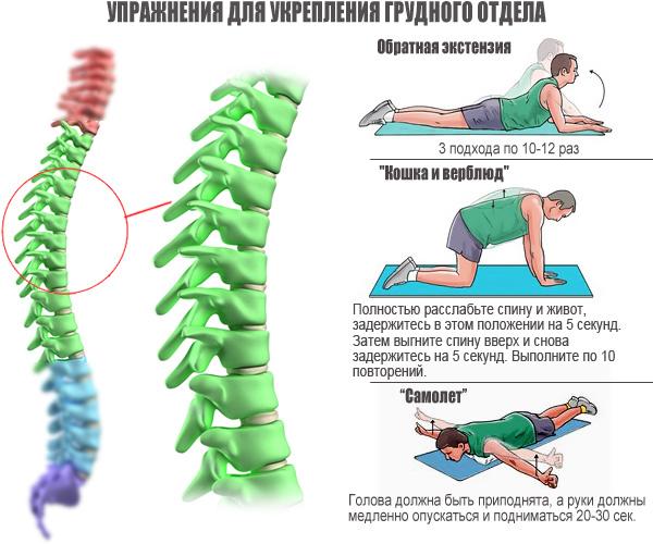 упражнения-для-укрепления-грудного-отдела1