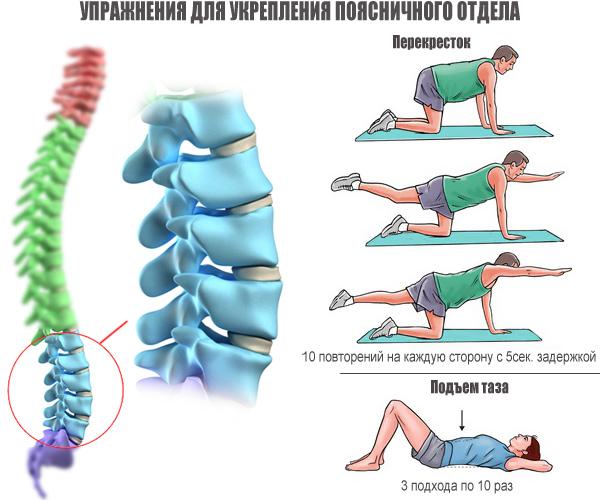 упражнения-для-укрепления-поясничного-отдела21