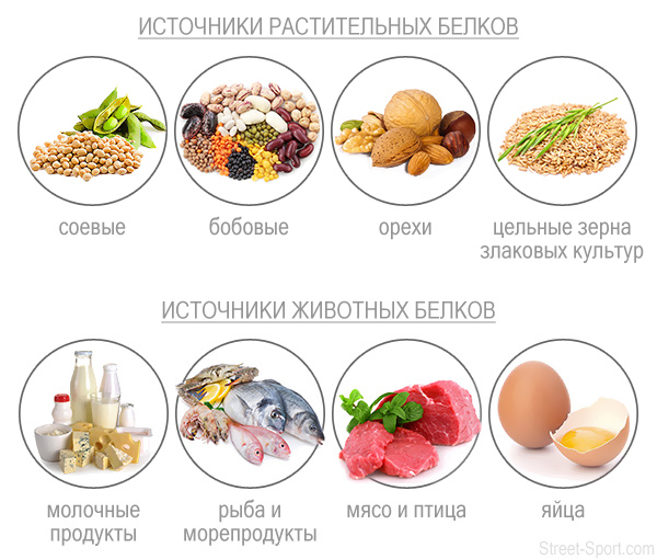 правильное питание белки жиры углеводы соотношение