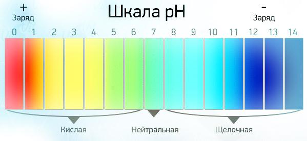 шкала-пиаш
