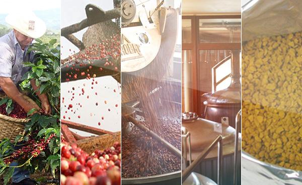 производство-кофе